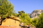 Tree Houses Kabak