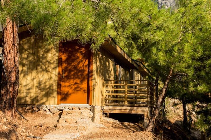 Tree Houses Kabak